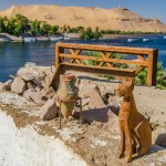 El Nilo desde la casa Nubia en la Isla Elefantina