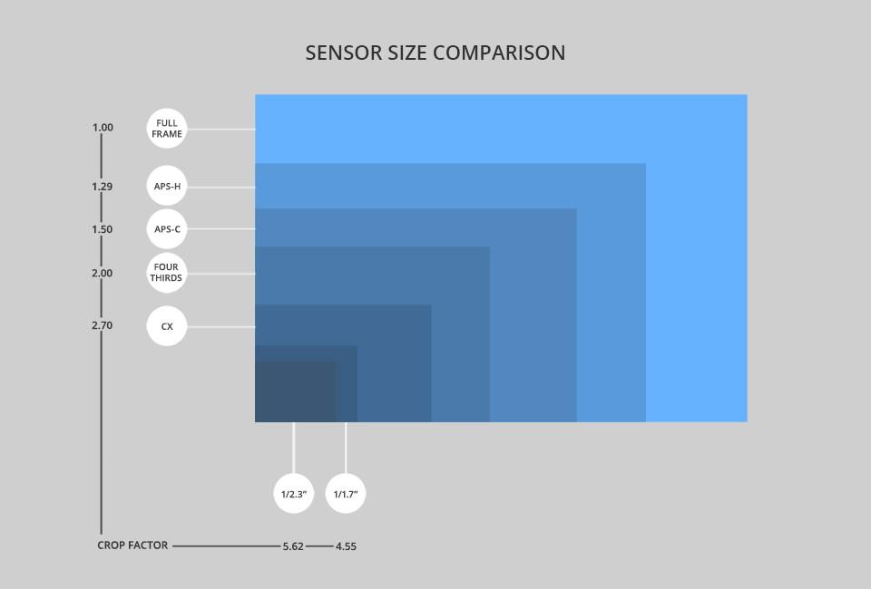 En este recuadro se aprecia la comparativa de tamaño entre los distintos tipos de sensores